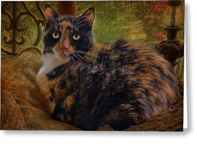 Cute Greeting Cards - Annabelle Greeting Card by Larry Marshall