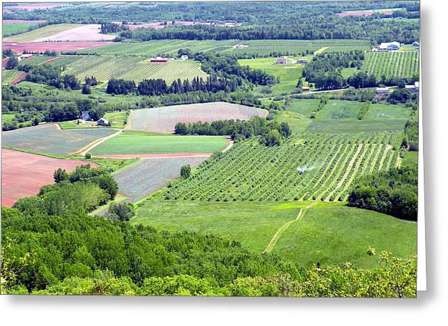 Annapolis Valley Greeting Cards - Annapolis Valley Farmland Greeting Card by Brian Chase