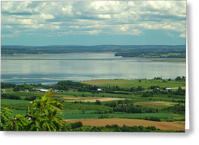 Minas Basin Greeting Cards - Annapolis Valley No.1 Greeting Card by George Cousins