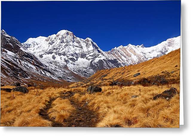 Himalayan Greeting Cards - Annapurna South Ridge 2 Greeting Card by FireFlux Studios