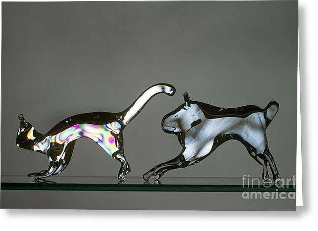 Glasswork Greeting Cards - Annealed And Unannealed Glass Greeting Card by James L. Amos