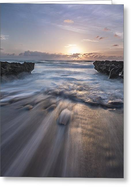 Pink Prints Greeting Cards - Another Chance Greeting Card by Jon Glaser