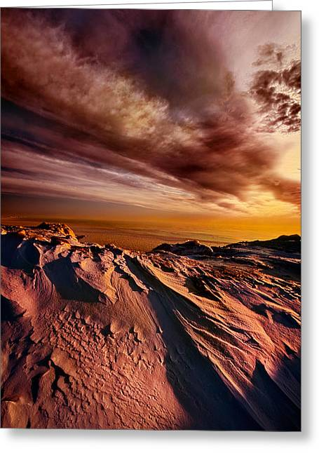 Shadows Greeting Cards - Another Day in Paradise Greeting Card by Phil Koch