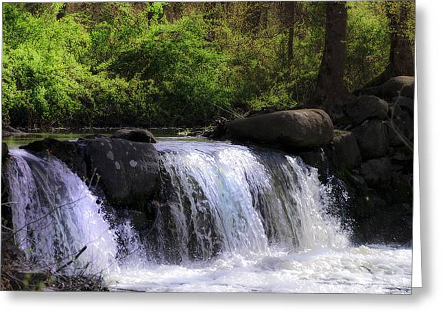 Stream Digital Greeting Cards - Another Hidden Waterfall Greeting Card by Bill Cannon