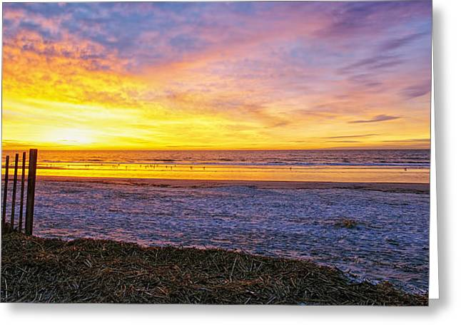 Sunrise With The Birds Greeting Card by Phill Doherty
