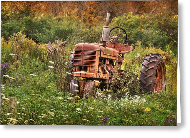 Overgrown Greeting Cards - Another Time Greeting Card by Lori Deiter