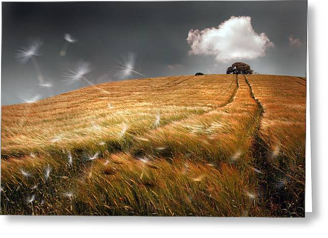 Breezy Greeting Cards - Another Windy Day Greeting Card by Mal Bray