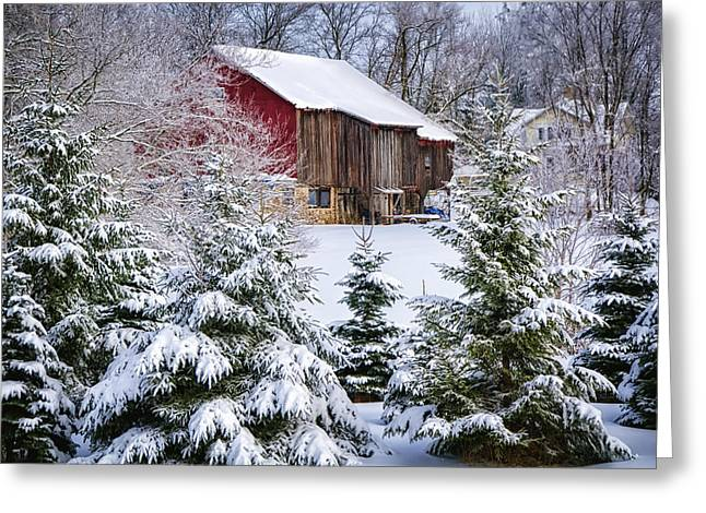 Snowstorm Greeting Cards - Another Wintry Barn Greeting Card by Joan Carroll