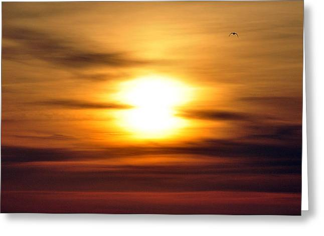 South Boston Prints Greeting Cards - Another World Greeting Card by Joanne Brown