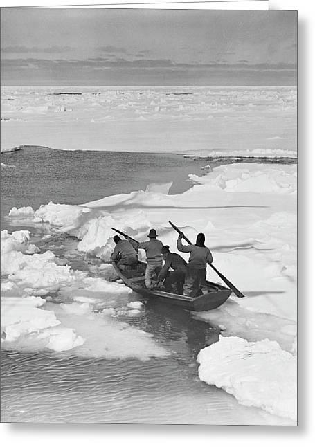 Antarctic Penguin Hunt Greeting Card by Scott Polar Research Institute