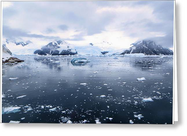 Bergy-bit Greeting Cards - Antarctica Bergy Bits Greeting Card by Jennifer LaBouff