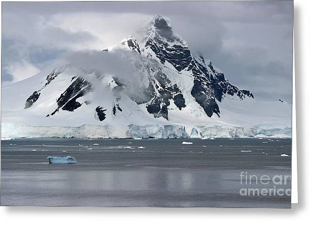 Jan Wolf Greeting Cards - Antarctica Greeting Card by Jan Wolf