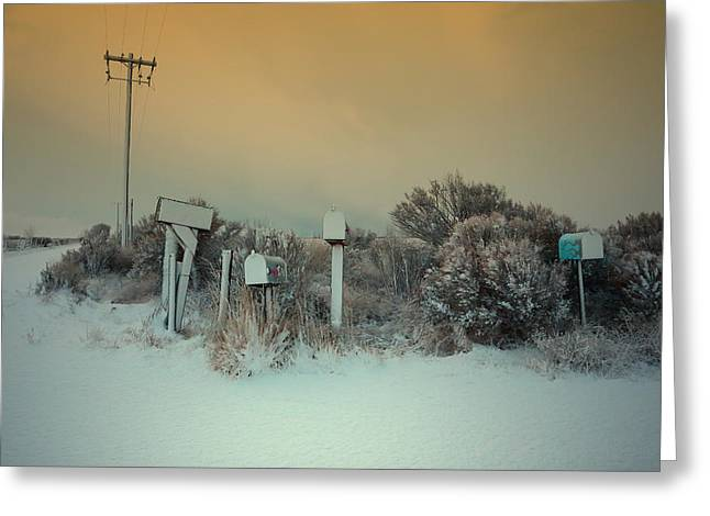 Winter Storm Greeting Cards - Anticipation  Greeting Card by Mark  Ross