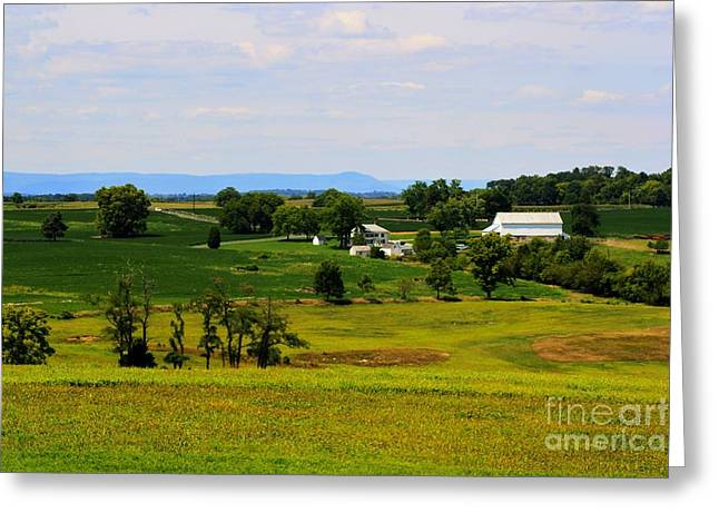 Civil War Site Greeting Cards - Antietam Battlefield and Mumma Farm Greeting Card by Patti Whitten