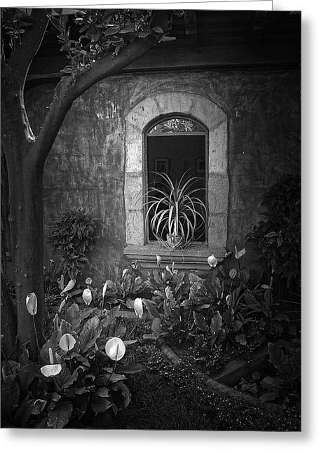 Antigua Window Greeting Card by Tom Bell