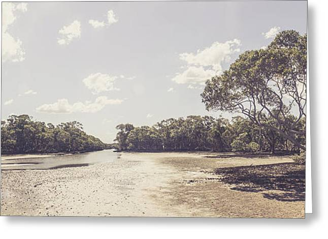 Beautiful Creek Greeting Cards - Antique mangrove landscape Greeting Card by Ryan Jorgensen