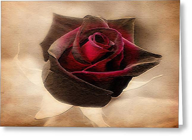 Award Digital Greeting Cards - Antique Red Rose Greeting Card by Dennis Buckman