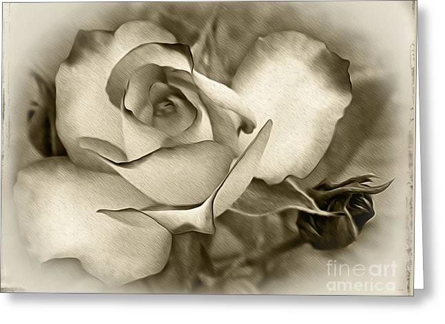 Antique Rose Greeting Card by Kaye Menner