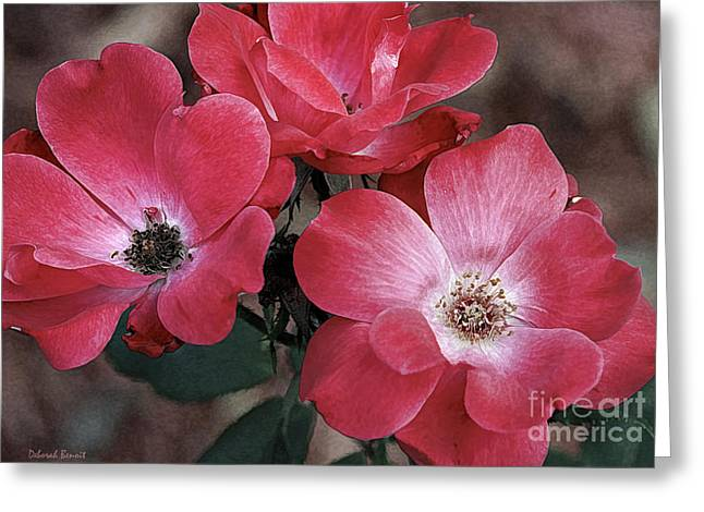 Rose Petals Mixed Media Greeting Cards - Antique Roses Greeting Card by Deborah Benoit