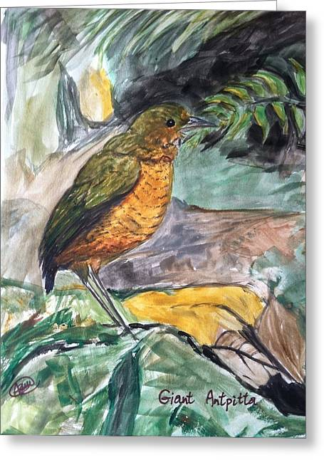 Antpitta Greeting Card by Asuncion Purnell