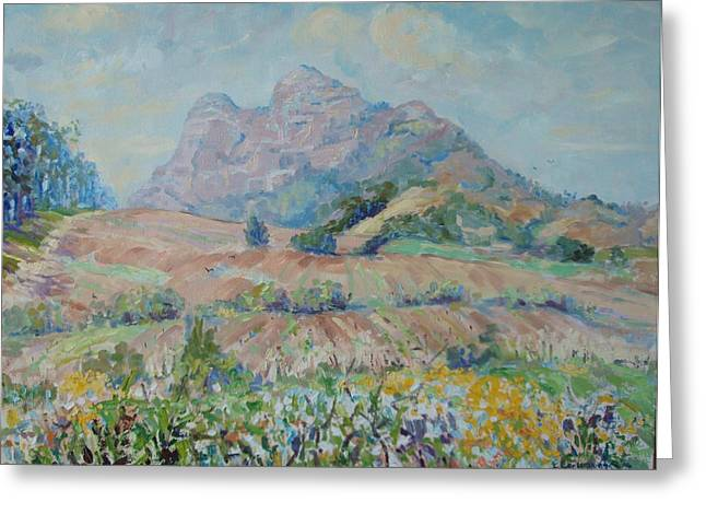 Winelands Greeting Cards - Anura Vineyards in Spring Greeting Card by Elinor Fletcher