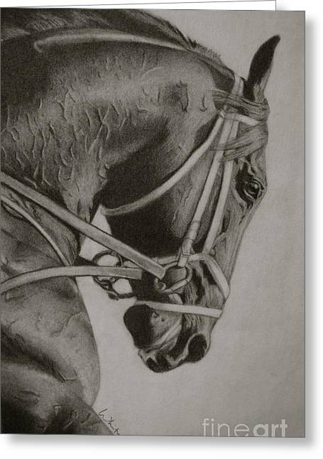 Race Horse Drawings Greeting Cards - Any Given Saturday Greeting Card by Whitney Valls