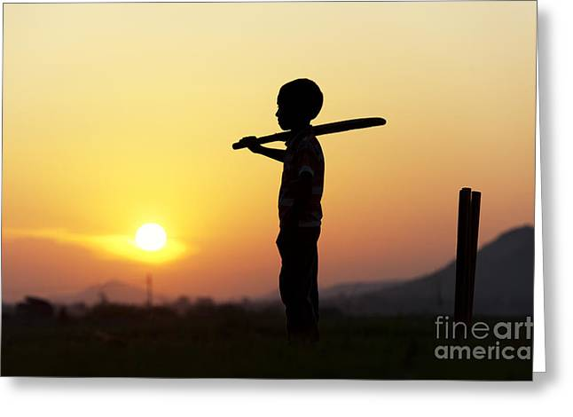Wishes Greeting Cards - Any One for Cricket Greeting Card by Tim Gainey