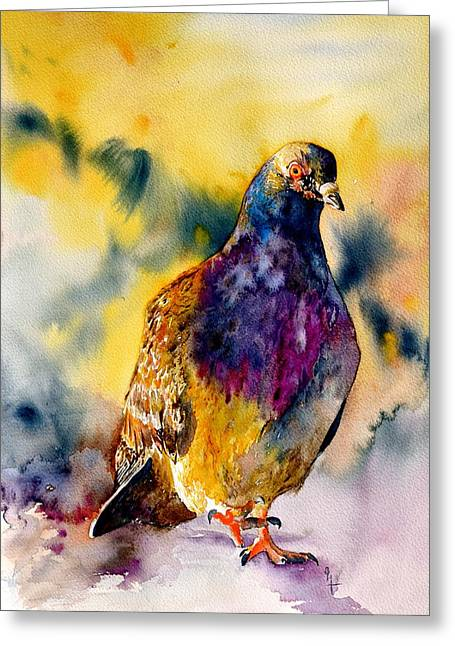 Feral Pigeon Greeting Cards - Anytime Anywhere Greeting Card by Beverley Harper Tinsley