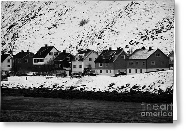 Scandanavian Greeting Cards - Apartment Houses Strandgata Havoysund Finnmark Norway Europe Greeting Card by Joe Fox