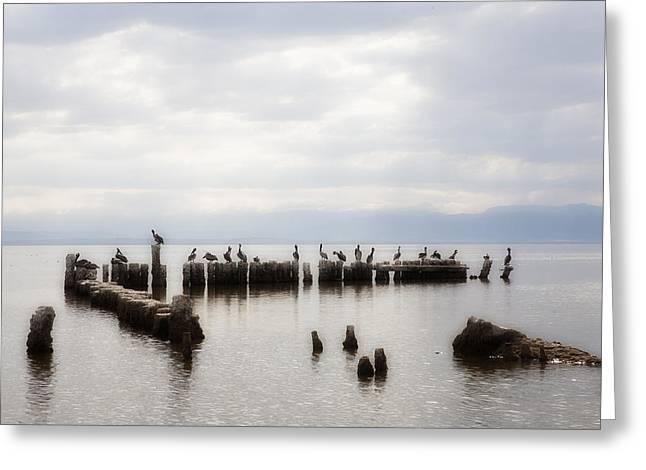 Sonny Bono Greeting Cards - Apostles of the Salton Sea Greeting Card by Hugh Smith