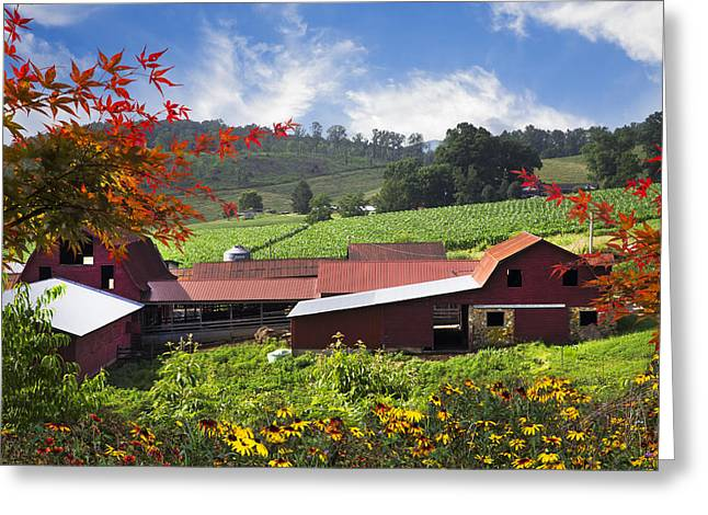Tennessee Barn Greeting Cards - Appalachian Dairy Farm Greeting Card by Debra and Dave Vanderlaan