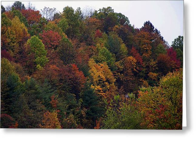 Landscape Pictures Greeting Cards - Appalachian mountain fall Greeting Card by Chris Flees