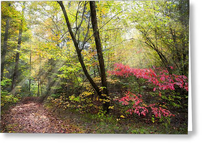 Tennessee River Greeting Cards - Appalachian Mountain Trail Greeting Card by Debra and Dave Vanderlaan