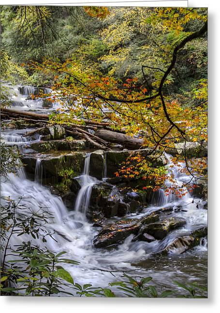 Oak Creek Greeting Cards - Appalachian Mountain Waterfall Greeting Card by Debra and Dave Vanderlaan