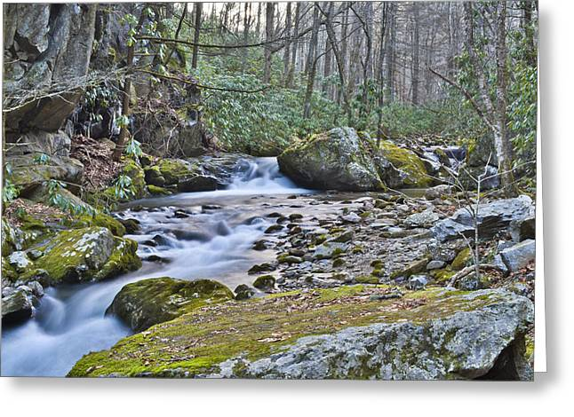 Franklin Tennessee Greeting Cards - Appalachian Stream 2 Greeting Card by Ryan Phillips