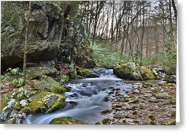 Franklin Tennessee Greeting Cards - Appalachian Stream 3 Greeting Card by Ryan Phillips