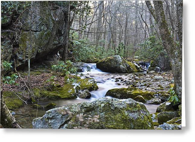 Franklin Tennessee Greeting Cards - Appalachian Stream Greeting Card by Ryan Phillips