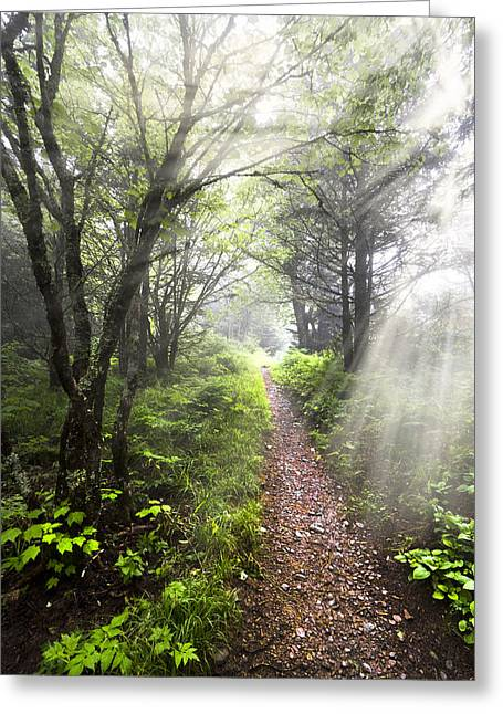 Caves Greeting Cards - Appalachian Trail Greeting Card by Debra and Dave Vanderlaan