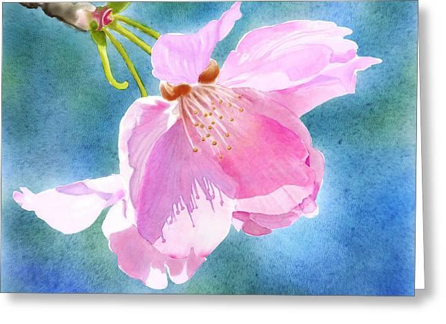 Joan A Hamilton Greeting Cards - Apple Blossom on Blue Greeting Card by Joan A Hamilton