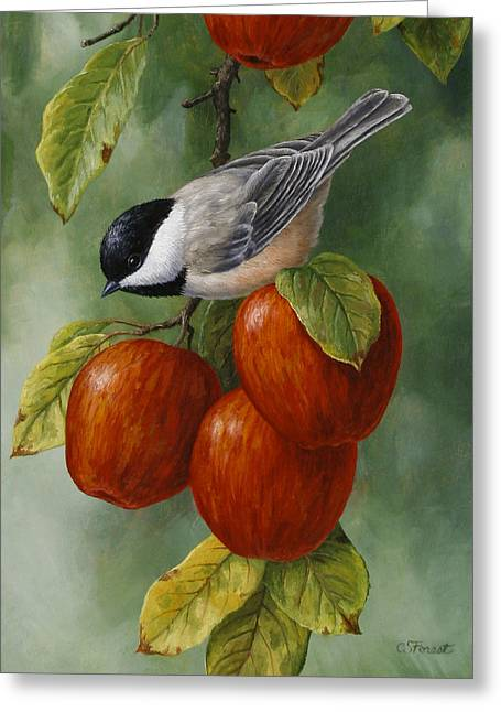 Song Birds Greeting Cards - Apple Chickadee Greeting Card 3 Greeting Card by Crista Forest