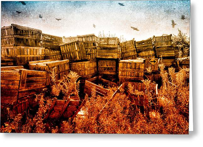 Apple Crates and Crows Greeting Card by Bob Orsillo