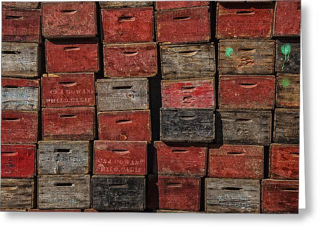 Apple Crates Greeting Cards - Apple Crates Greeting Card by Garry Gay