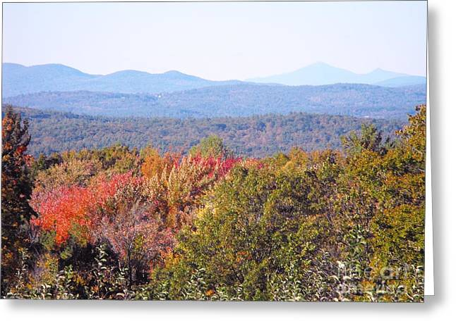 Concord Greeting Cards - Apple Orchard Overlook Greeting Card by Lisa J Gifford