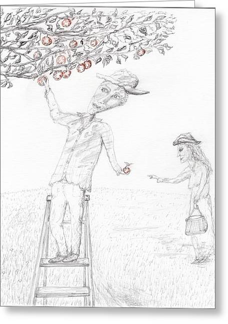 Orchard Drawings Greeting Cards - Apple picking Greeting Card by Jim Taylor
