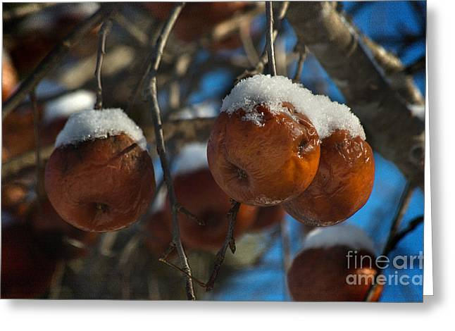 Sorbet Digital Art Greeting Cards - Apple Sorbet Greeting Card by The Stone Age