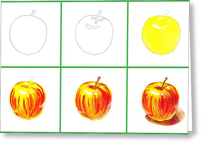 Yellow Apples Greeting Cards - Apple Study Greeting Card by Irina Sztukowski