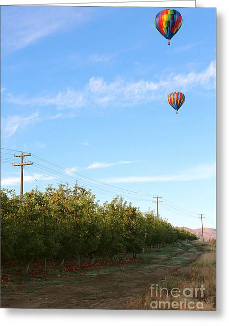 Yakima Valley Greeting Cards - Apple Trees and Balloons Greeting Card by Carol Groenen