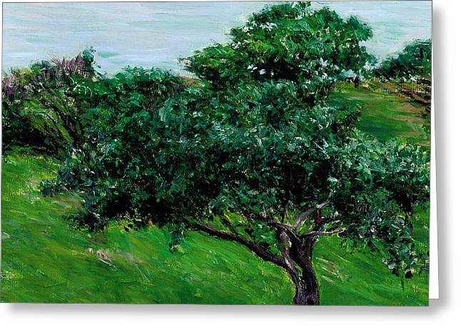 Apple Trees by the Sea Trouville Greeting Card by Gustave Caillebotte