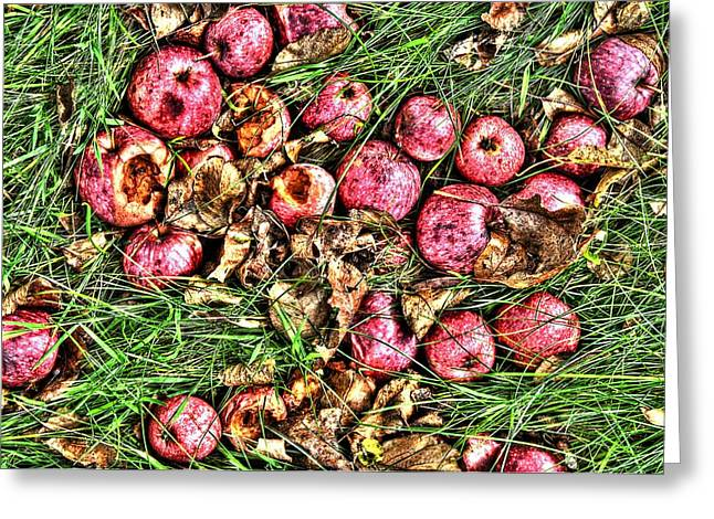 Fall Grass Greeting Cards - Apples Greeting Card by Duncan  Way
