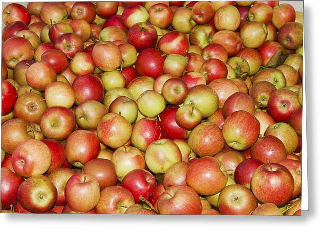 Open Market Greeting Cards - Apples For Sale At Farmers Market In Maine Greeting Card by Keith Webber Jr